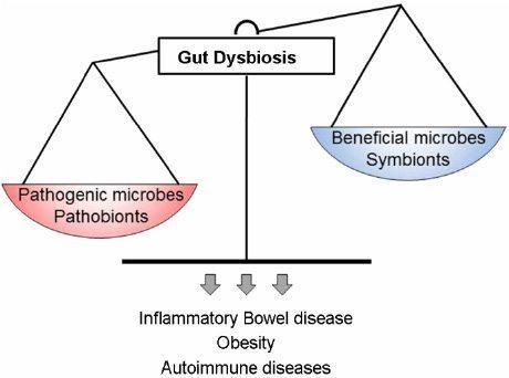 gut dysbiosis