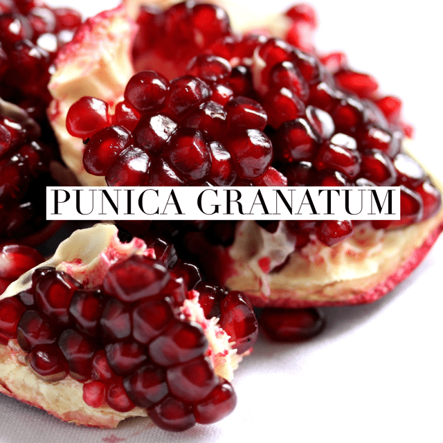 pomegranate for health